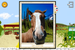 thumb_carte_cheval_fr